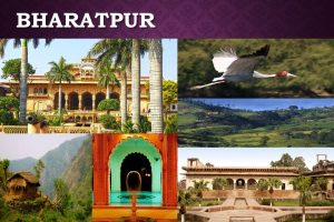 BHARATPUR